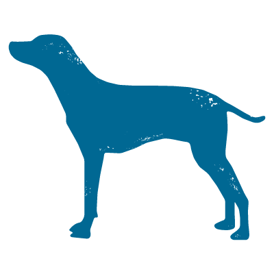 page-icon-dog